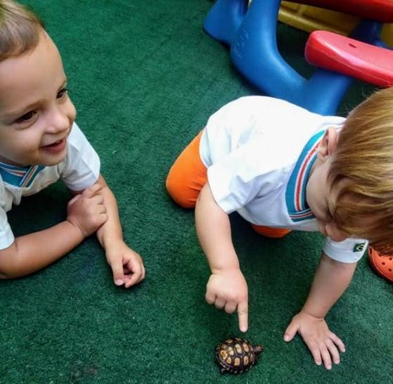 Creche Bebê de 2 Anos Parque São Jorge - Creche Bebê 6 Meses