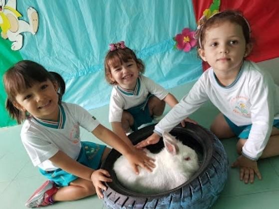 Creches Infantis Integrais Vila Azevedo - Creche Infantil Meio Período