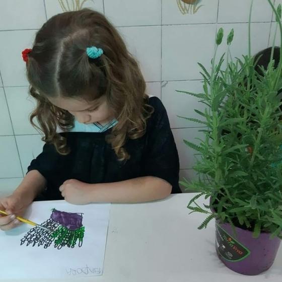 Pré Escola e Creche Onde Encontro Vila Parque São Jorge - Pré Escola Meio Período