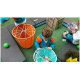 creches infantis particular para bebê Jardim Anália Franco