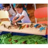 escolas ensino infantil Chácara Belenzinho